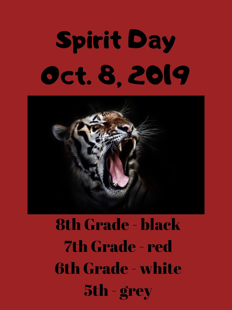 MS Spirit Day